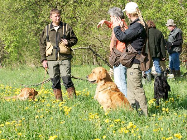 groepslessen jachthondenschool